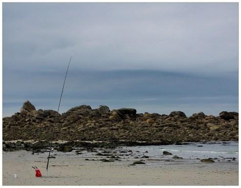 pêchecurnicvougot