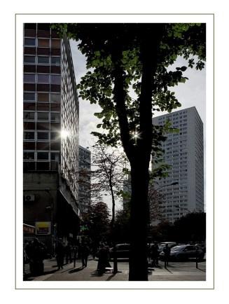 Paris 13e quartier asiatique