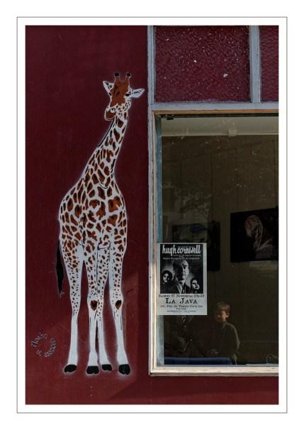 la girafe de Moskosetassociés