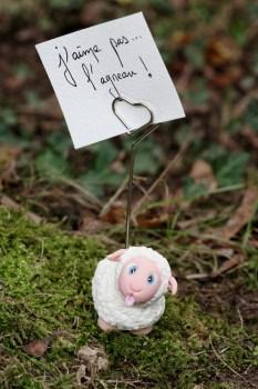 mouton porte photo