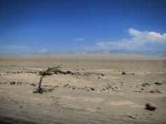 Nazca-Huacachina-2757