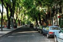 Streets of Mendoza (4)