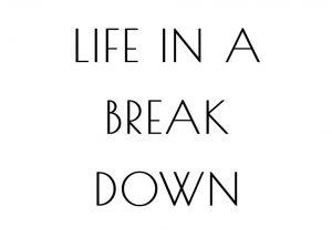 life in a breakdown Sarah Bailey