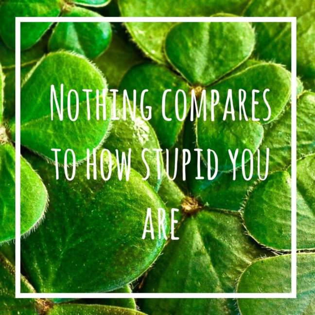 noting compares to how stupid you are || sinead o'connor