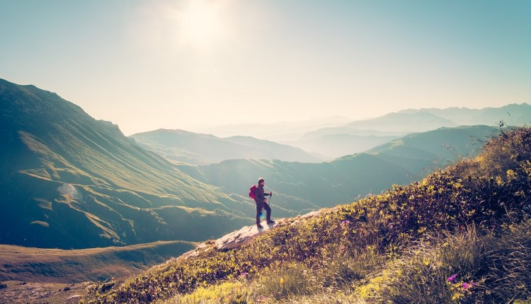 Rewilding the mind: a new frontier of personal development