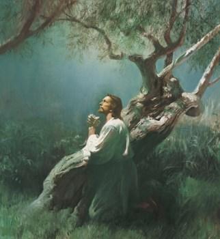 Jesus praying for our sins