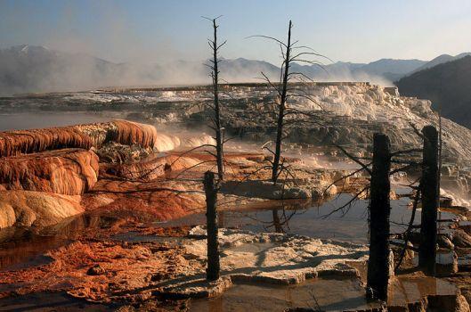 landscape photo of a desolate land