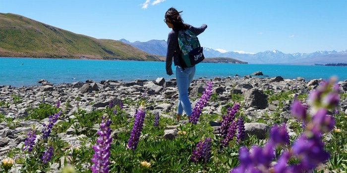 A girl stands near a river surrounded by rocks and purple flowers.