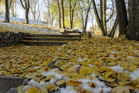 Bild: Herbststimmung in der P. Cvirkos aikštė in der Altstadt von Vilnius. Vilnius ist eine Stadt der Parks und Bäume - fast die Hälfte des Stadtgebietes ist eine Parklandschaft. NIKON D700 mit AF-S NIKKOR 28-300 mm 1:3.5-5.6G ED VR.