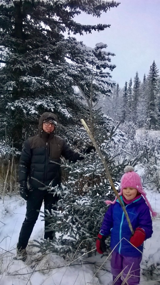 Christmas Tree Hunting