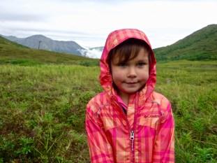 Arctic Valley Black Berries