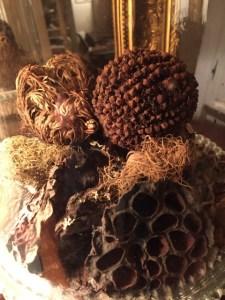 pomander décoration nature sèche