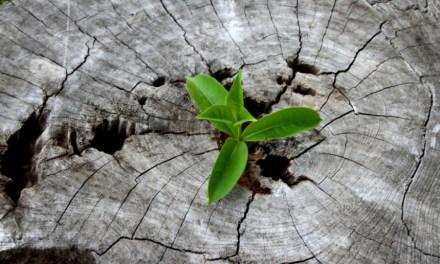 3 consigli per non perdere la speranza nei momenti più difficili