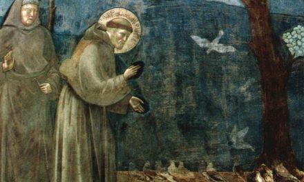 Lo stile di San Francesco d'Assisi e dei suoi frati: umiltà e mitezza