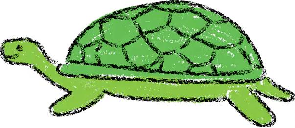 La tartaruga sciocca