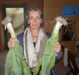 Légumes pour la table
