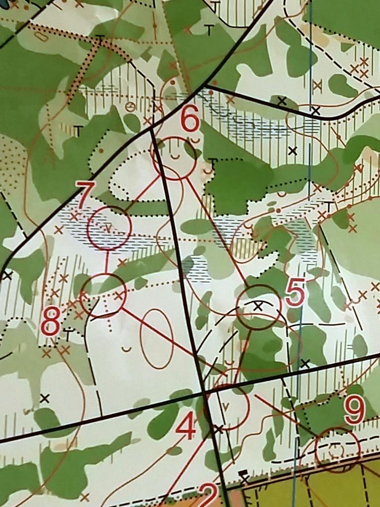 Ein Kartenauszug. Posten 7 und 8 lagen - für unser Verständnis - mitten im dunklen Wald