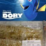 Finding Dory – The Tragedy