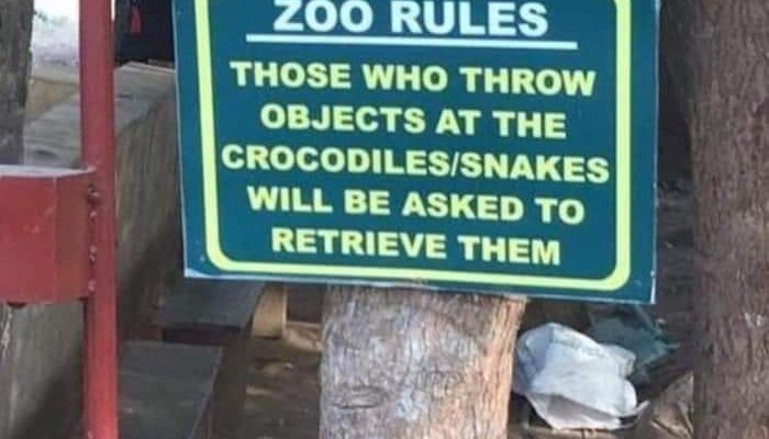 Do Not Throwing Objects to the Animals in the Zoo