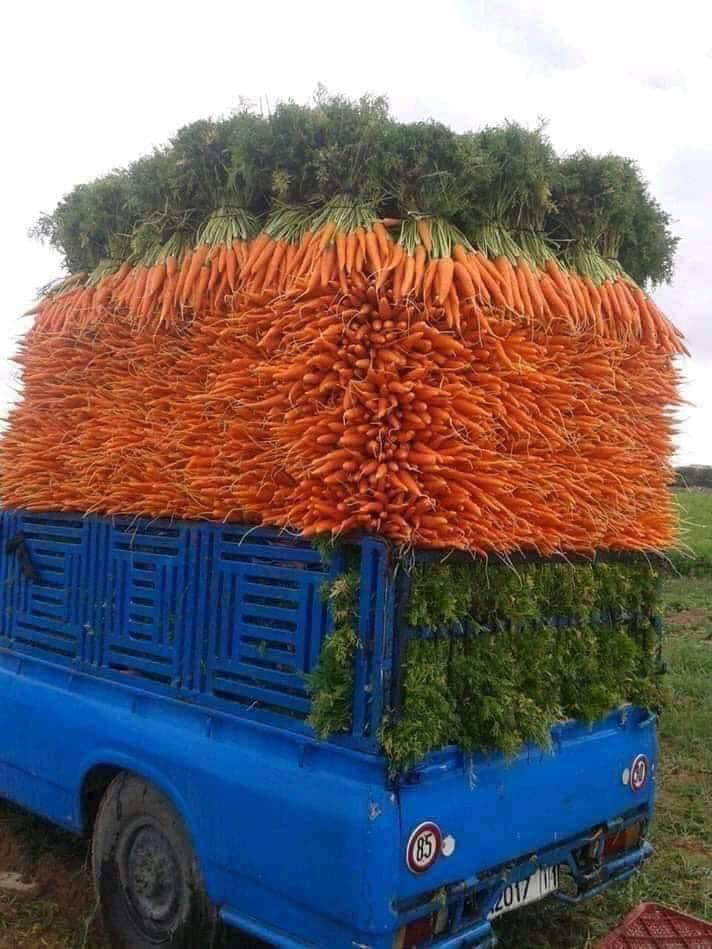 Stacking Carrots (Level: Expert)