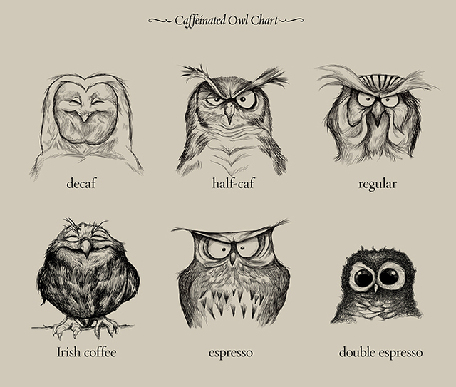 Caffeinated Owls