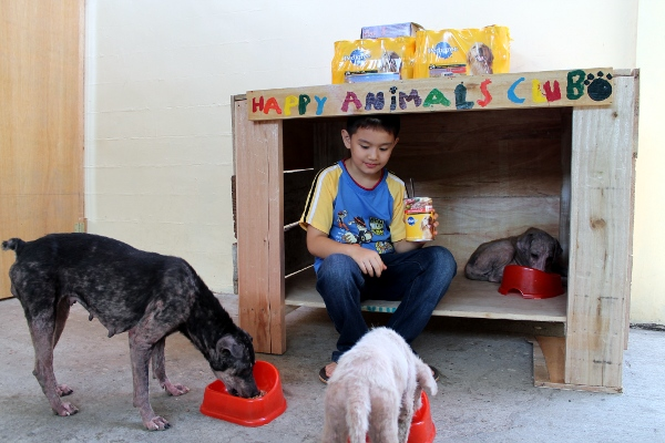 Happy Animals Club