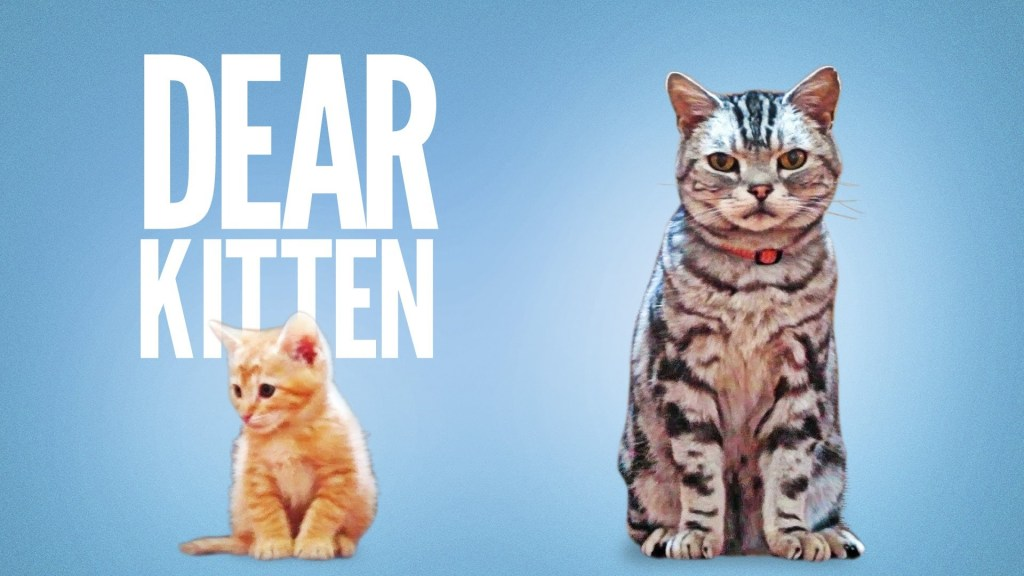 Dear Kitten, A Cute Friskies Ad Narrated By Ze Frank About
