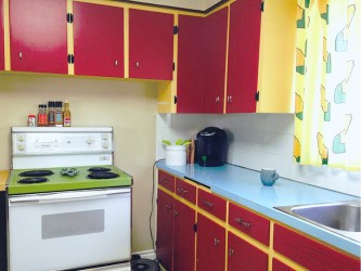 Calgary Couple Remodels Their Real Life Kitchen to Look Like the Cartoon Kitchen From The Simpsons