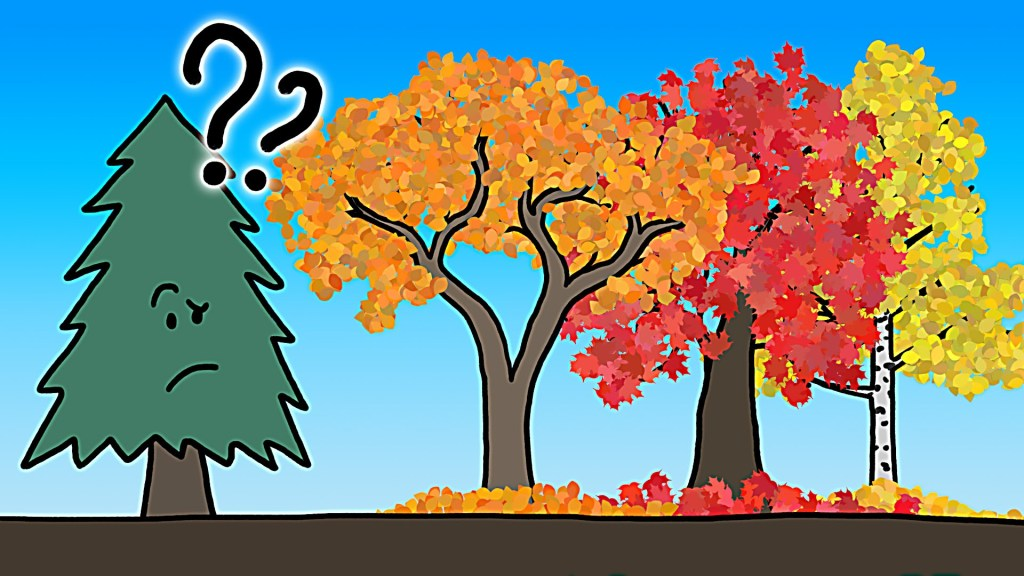 Autumn Tree Leaf Fall Animated Wallpaper An Informative Animation That Vividly Explains The Real