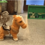 A Tiny Owl Takes an Adventurous Ride Around the Room on a Singing Robotic Toy Horse
