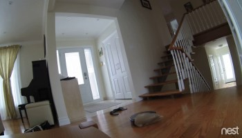 A Man Recounts the Tragic Story of His Roomba Running Over Dog Poop