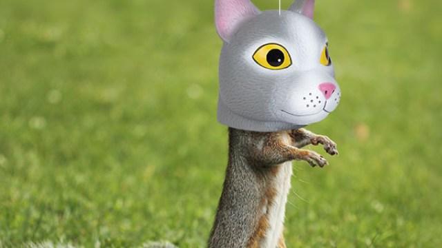 Horse Head Squirrel Feeder By Archie Mcphee