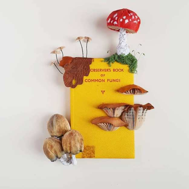 common-fungi Vintage Books Decorated With Ornamental Papercraft Variations of the Topic Described Inside the Pages Random