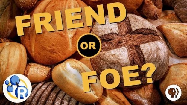 gluten-friend-or-foe The Science of Gluten Explained With Baking Bread Random