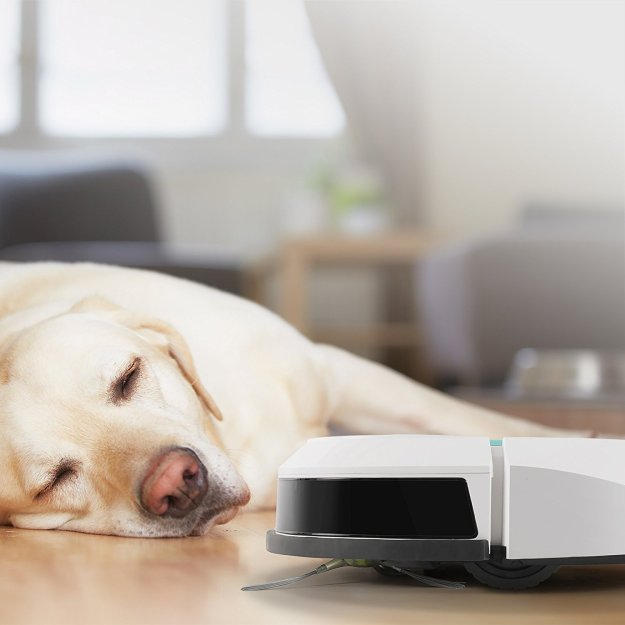 deebot-mini2-dog Powerful ECOVACS Mini Robotic Vacuum Cleaner That Can Be Easily Controlled With a Smartphone Random