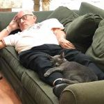 Compassionate 75 Year Old 'Cat Grandpa' Raises Money by Napping With Special Needs Shelter Cats