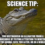 A Scientifically Accurate Way to Tell the Difference Between an Alligator and a Crocodile