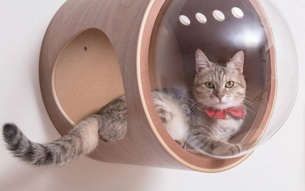 Cat-in-Space-on-Wall Cosmic Cat Beds Inspired by Classic Spaceships Random