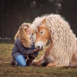 A Gorgeous Horse With a Long Mane of Blonde Curls That Match Those on Her Beloved Human's Head