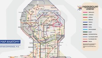 Subway Map Tapestry.Subway Deserts A New York City Map Visualizing Areas That Are
