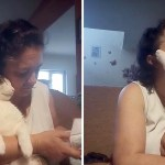 Disabled Cat Engulfs Her Human With Grateful Affection