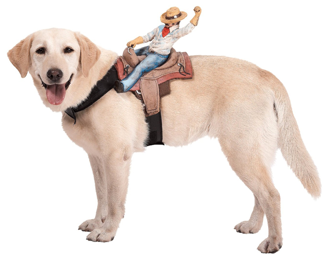 Humorous Dog Costumes That Look Like Things are Riding on