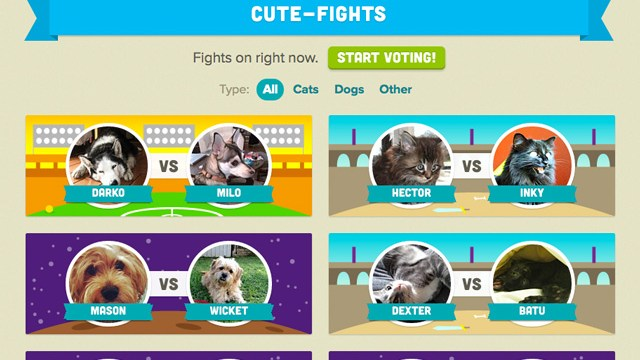 my talking pet a photo app that lets your pets do the talking