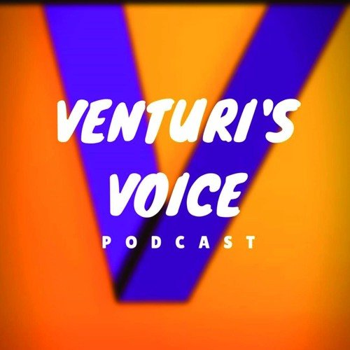 Interviewed on Venturi's Voice podcast – Humanising Data Insights