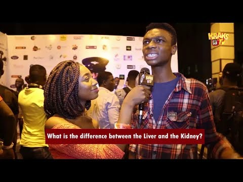 "KraksTV – Difference between the ""Liver"" and the ""Kidney""?"