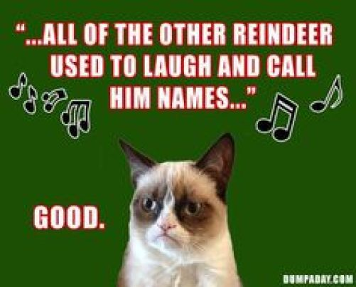 grumpy cat christmas - Christmas Names For Cats