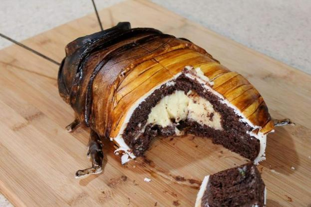 Madagascar Hissing Cockroach Cake with Boston Creme Filling