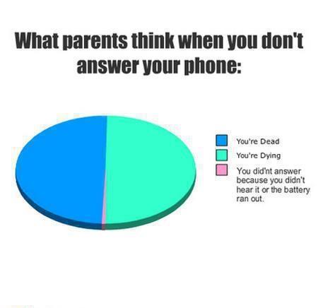 What Parents Think
