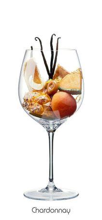 cepa vino chardonnay