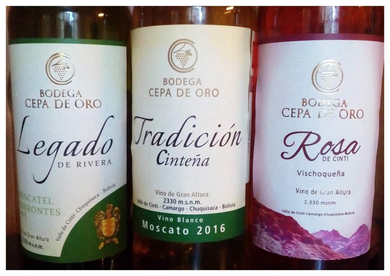 vinos cepa de oro cinti chuquisaca bolivia
